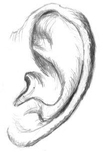 ציור של אוזן